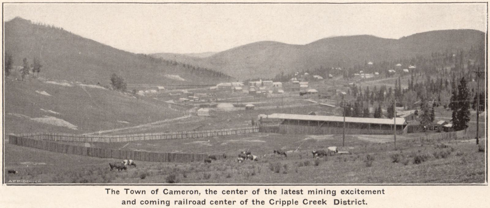 The Town of Cameron, the Center of the Latest Mining Excitement and Coming Railroad Center of the Cripple Creek District.